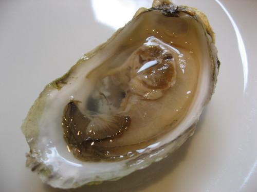 OysterHalfShell