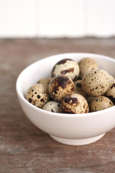 Quail Eggs 2_8801