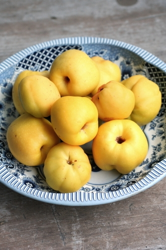 Bowl of Quince_0976
