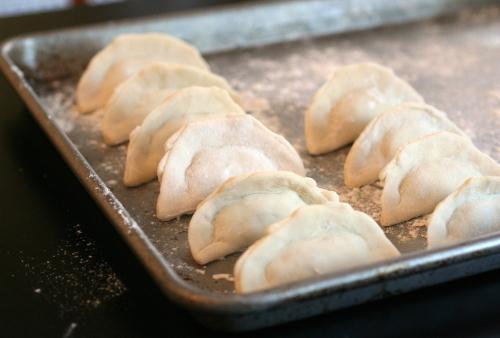 Dumplings_1566