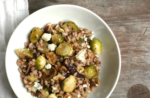 Fall Farro Salad 3023