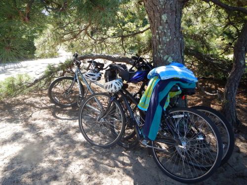 Bikes 794
