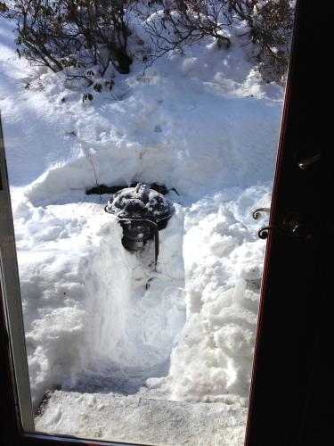 Snowy Grill_3139